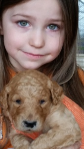 nora and puppy 1