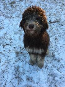 Joanna in snow